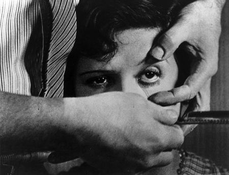 Un Chien Andalou. Salvador Simo's Buñuel in the Labyrinth of the Turtles is considered and reviewed at Riot Mateiral, LA's premiere magaizine for art and film.