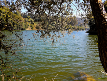 One of Rolando's new favorite hikes in the Oakland Hills