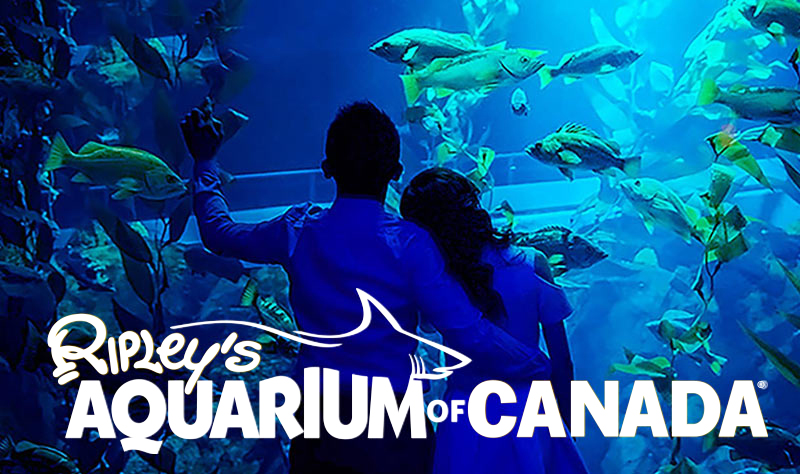 ripley s aquarium of
