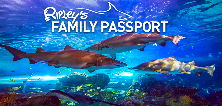 Family-Passport-Slider-V2