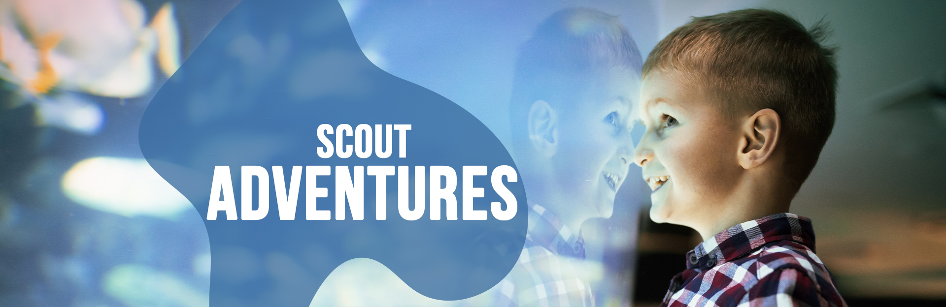 Header Image for Scouts page