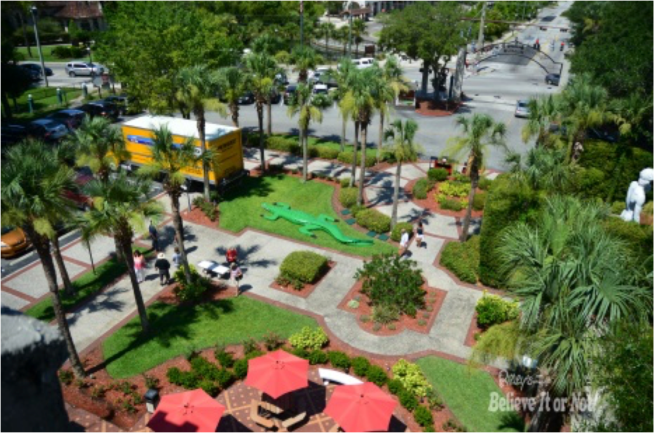 New Ripleys St Augustine Alligator 2015