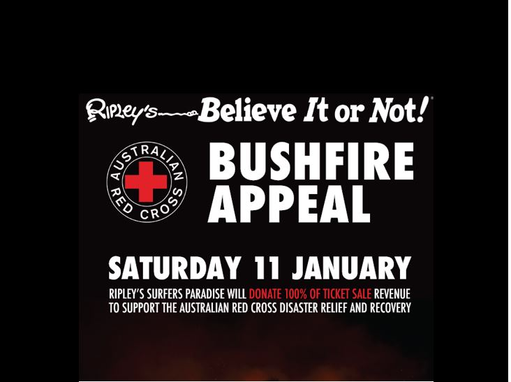 Surfers_BushfireRelief