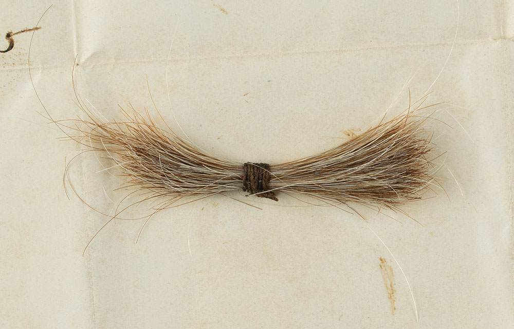 Abe Lincoln's Hair