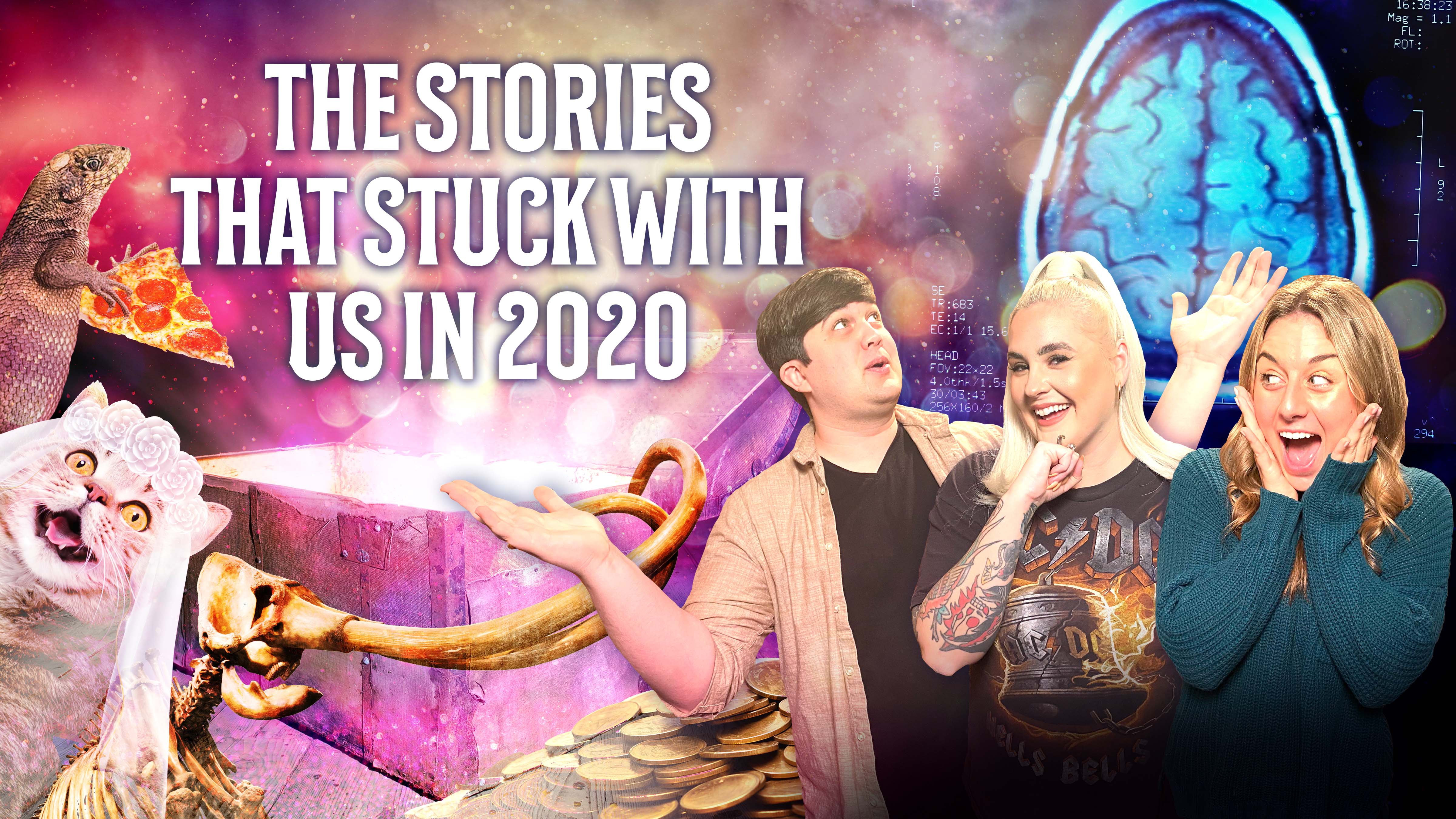 The Stories That Stuck With Us In 2020