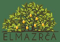 Elmazr3a Case Study