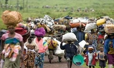 15,000 Nigerians from Sokoto, Zamfara taking refuge in Niger