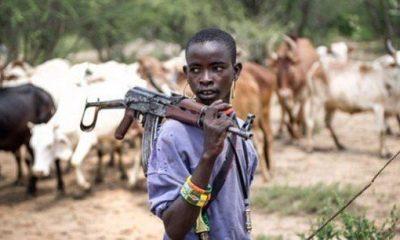 Priest shot, many injured as herdsmen invade seminary