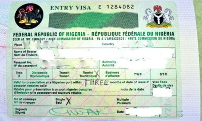 Nigerian govt bans issuance of visas to foreign engineers