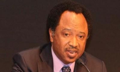 Oyegun was a failure, Oshiomhole is 'the best'— Sani