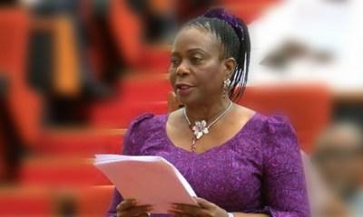 Buhari has done nothing to seek re-election —Senate minority leader