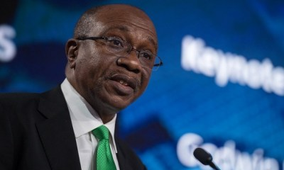 ECONOMY: The road ahead is rough, really rough, Emefiele tells Senate