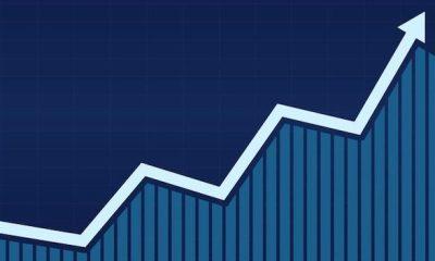 Growth graph bar