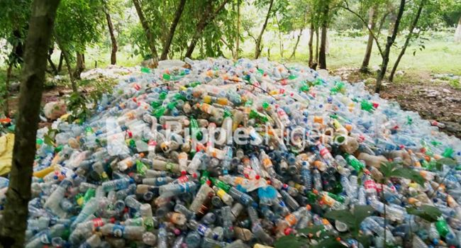 Waste plastic bottles tied up in bunches