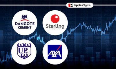 Dangote Cement, three other companies make Ripples Nigeria stocks-to-watch list