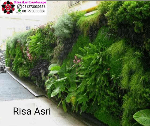 PEMBUATAN VERTICAL GARDEN taman vertikal green wall ( VERTICAL GARDEN ) atau sering disebut pula dengan dinding hijau, vega, dinding hidup, biowalls depok