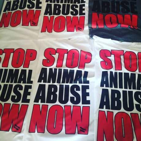 stop animal abuse now Tshirt