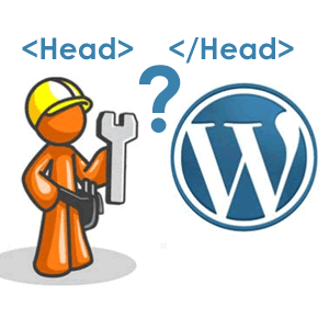 how to add head tag to wordpress
