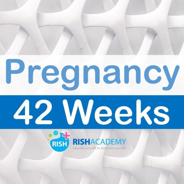 pregnancy medicine