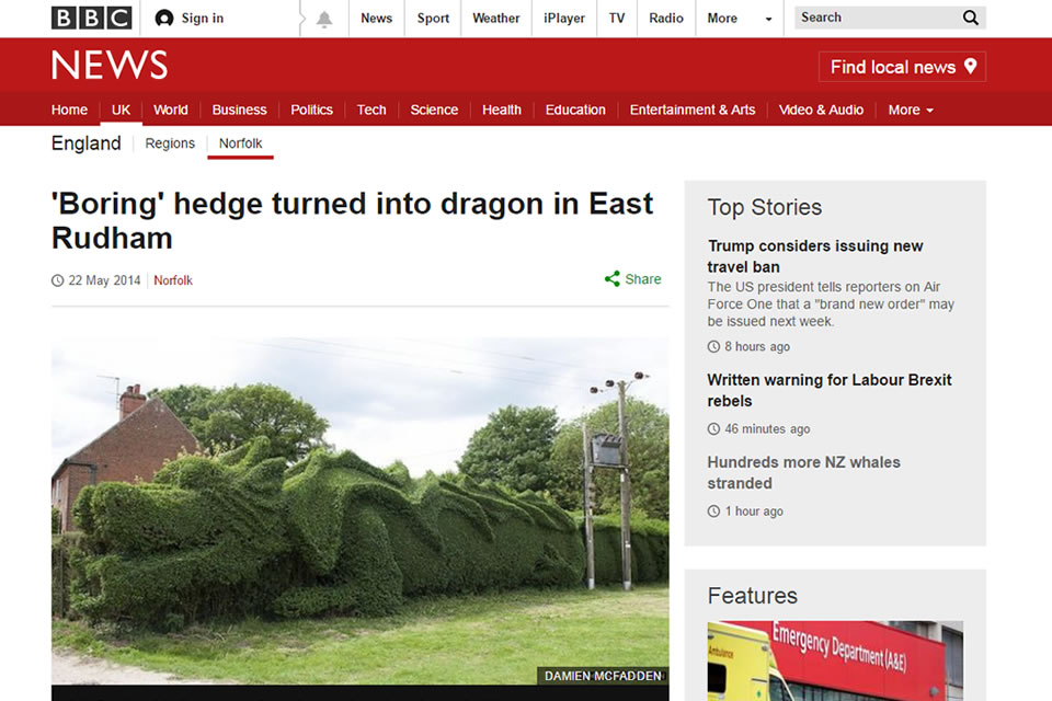 Feng Shui dragon hedge