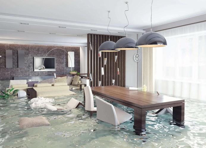 mission valley water damage repair