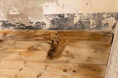 How do you fix water-damaged floors