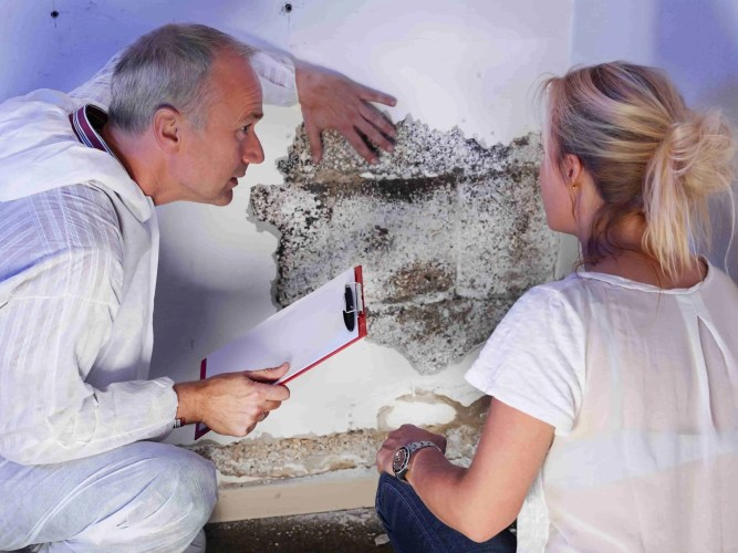 What happens if you breathe in mold spores
