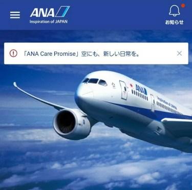 ANAマイルで夏の航空券が取り放題!?国内線特典航空券予約方法も解説