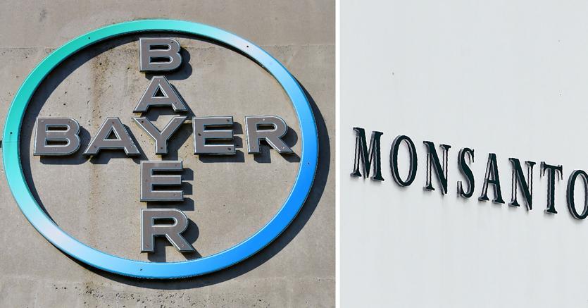 Fusione Bayer Monsanto, minaccia per cibo e salute