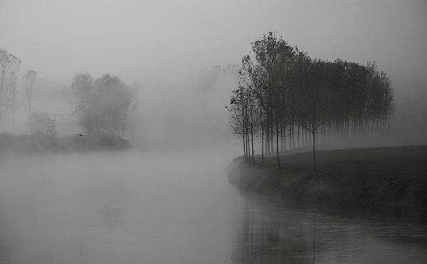Perch si forma la nebbia  Risposte360