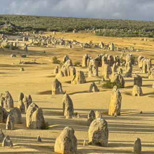 The Pinnacles i Nambung National Park