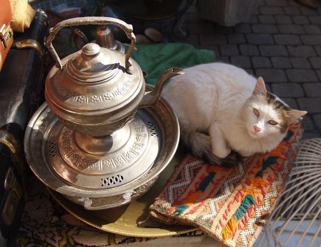 """La mia Giordania. """"Pieni del vostro tè"""""""