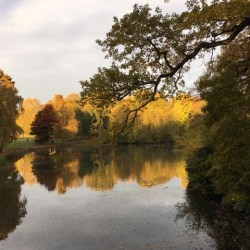 Hampstead Heath. Photo credits (c) Rosalie Kuyvenhoven, Rituals Today