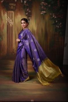 Kanakadhara Silk Fest (5)