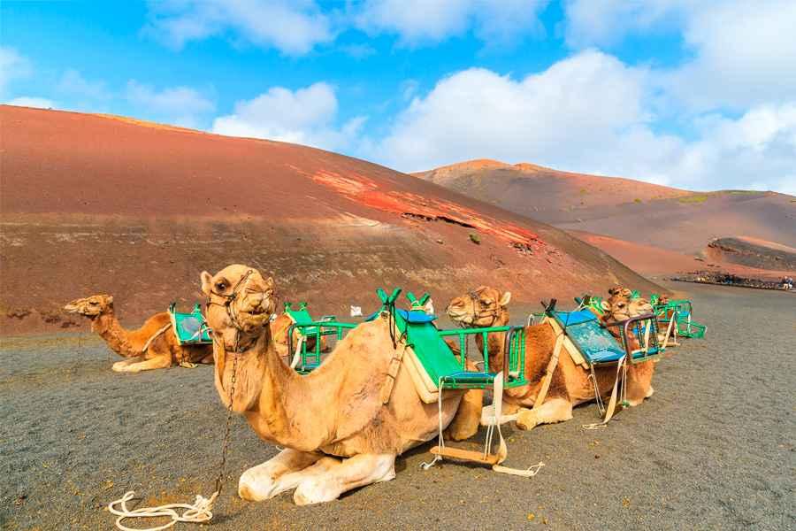 Resultado de imagen de Lanzarote