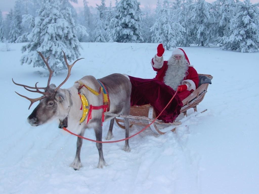 Paese di Babbo Natale Lapponia in Finlandia  Rovaniemi  aurore boreali