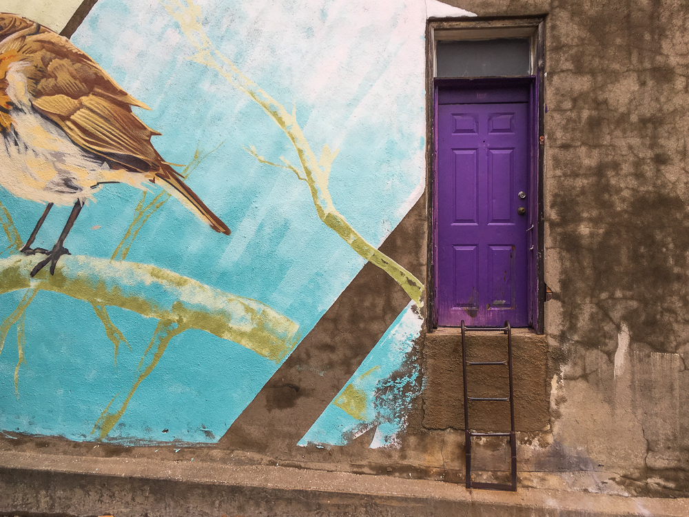 Purple Door In Alleyway, Bird Mural, Destin Texas
