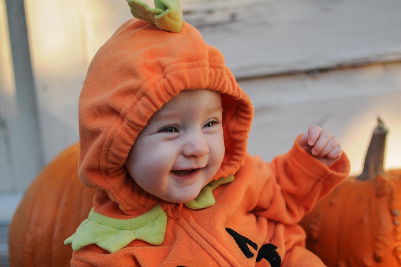 No More Babies Halloween Pumpkins Etc