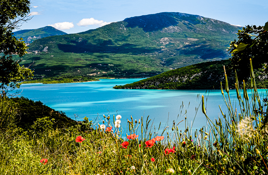 France, azure lake, red flowers