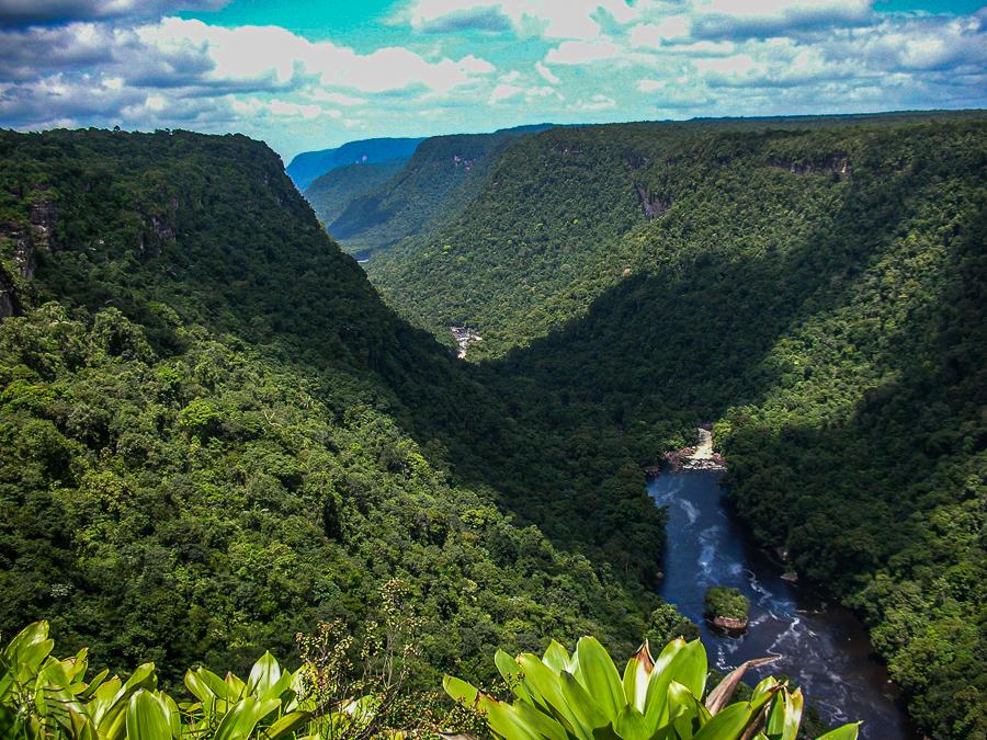 Guyana, Kaieteur Falls, Valley