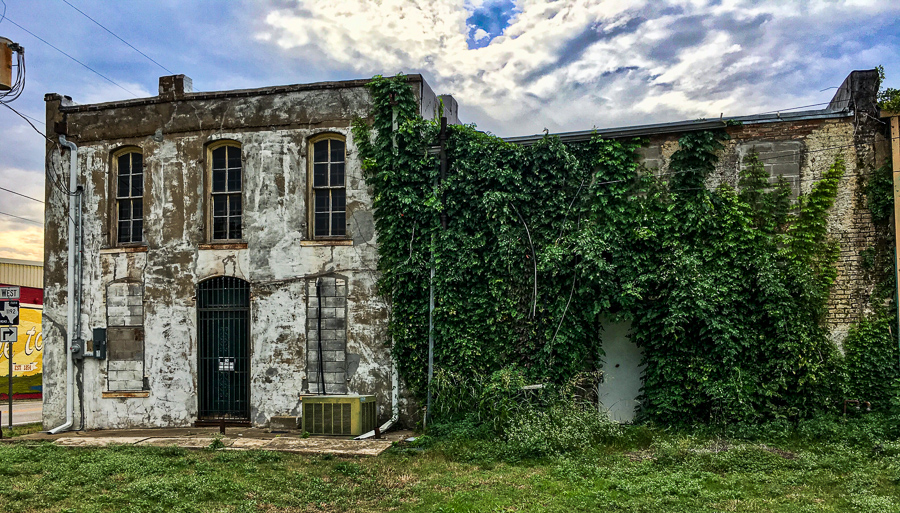 Building Vines Green And Memories
