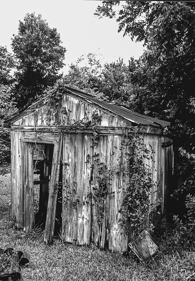 Abandoned Building - Shack, Ruined, Still Alive
