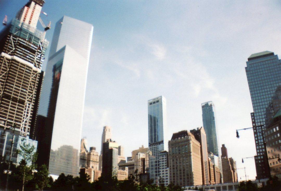 New York city sardina