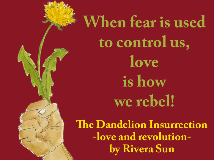 Image result for the dandelion insurrection
