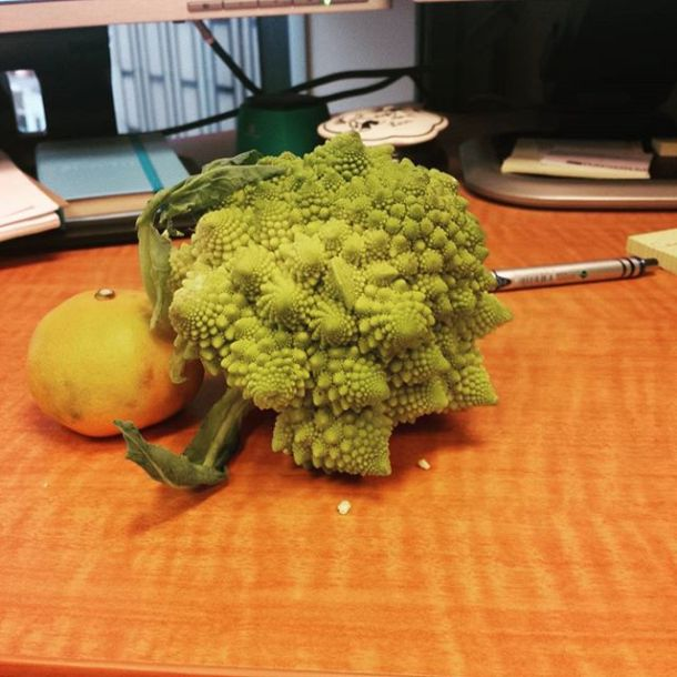 I'm so hungry I may eat this whole thing before going home! #romanescocauliflower #alienfood #tasty #butitsnotchocolate #healthyisbest #csa #riverbendgardens #alwayshungry