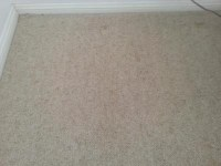 Removing furniture indents in carpets. - River City Carpet ...