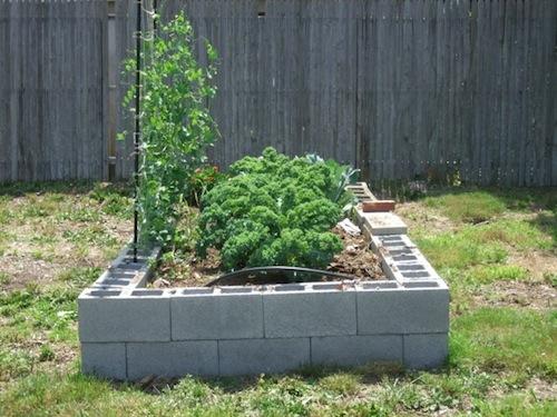 2013 0622 garden cinder blocks2