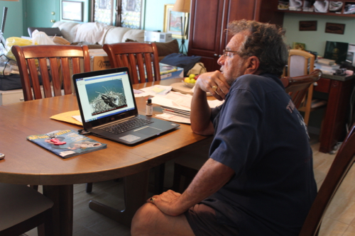 Tom Aprea sits in his kitchen and watched video of the osprey nest outside his home. Photo: Katie Blasl