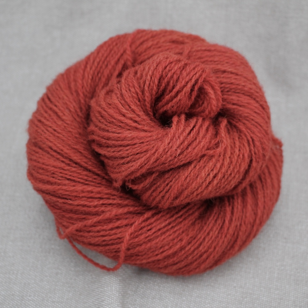 A skein of Severn 4 Ply in a rich burnt red colour