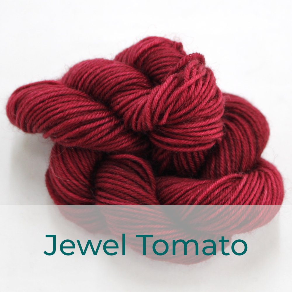 BFL 4 Ply mini skein in Jewel Tomato colourway. It is a rich red.